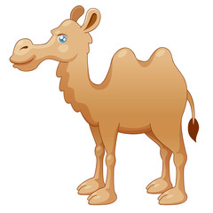 illustration of camel. Vector