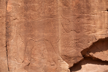 Petroglyphs on the rock