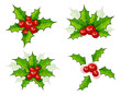 Holly christmas branch set