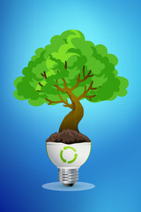 Green plant growing up through light bulb, can be used for go gr