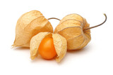 Three Physalis fruits