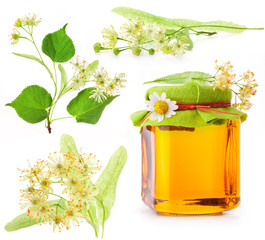 Collection of Linden flowers and Honey in glass jar