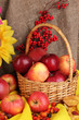 Colorful autumn still life with apples close-up