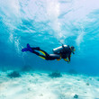 Silhouette Of Scuba Diver Near...