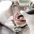 Dental technician working with articulator