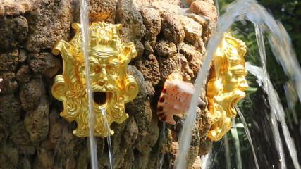 fountain detail in renovated Summer garden St. Petersburg Russia