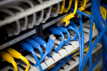 Large network hub and connected blue and yellow cables.