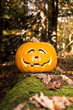 Jack O Lantern in the Haunted Woods