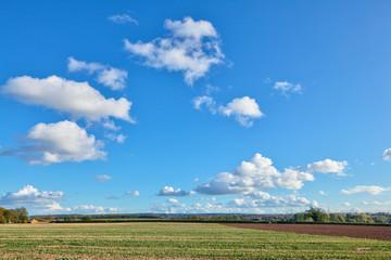 Farmland|
