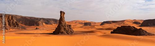 Panorama of sand dunes, Sahara desert - 45860953