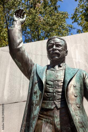 Theodore Roosevelt Statue Island Washington DC