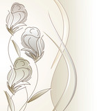 Fancy vector design for greeting card