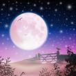 Moon and Night Sky