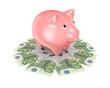 Pink piggy bank and euro banknotes.