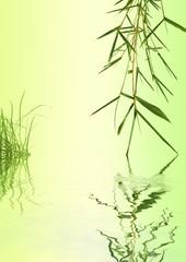 décor nature bambou et herbe
