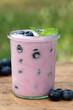 Heidelbeer-Joghurt