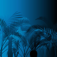 Tropical leaf rain forest background in night