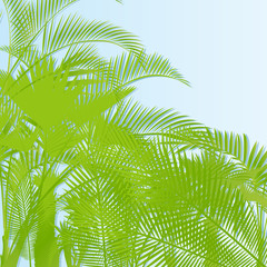 Tropical leaf rain forest background