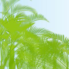 Tropical leaf rain forest background
