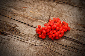 Bunch of red rowan on wooden texture