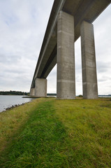 Orwell Bridge with grass in foreground