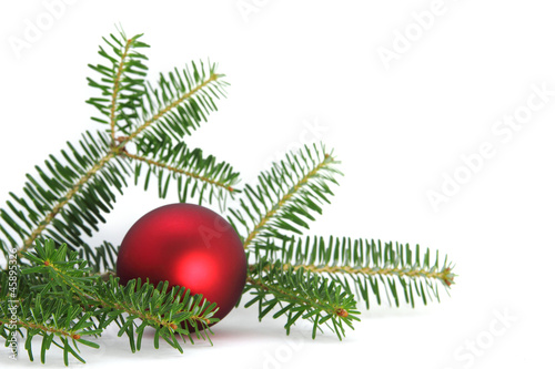 schlichte rote weihnachtskugel mit tannenzweig stockfotos und lizenzfreie bilder auf fotolia. Black Bedroom Furniture Sets. Home Design Ideas