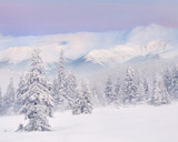 Fototapety Snowstorm in the mountains. Winter sunrise