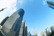 shanghai lujiazui skyline