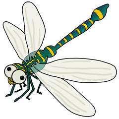 Insect icon : Dragonfly