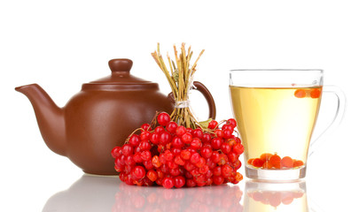 tea with red viburnum isolated on white