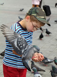 Boy is feeding the birds