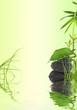 décor nature bambou, herbe, feuille sur galets