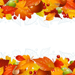 Vector autumn background with fall leaf