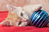 red kitten lays on a red with a Christmas toy