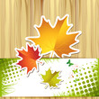 Wood background with autumn colorful leaves