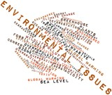 Word cloud for Environmental Issues poster