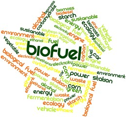 Word cloud for Biofuel