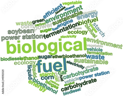 Word cloud for Biological Fuel