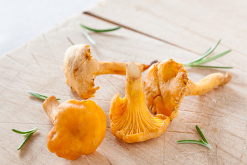 Chanterelles on wood with herbs