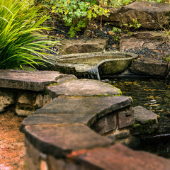 Patio Garden - Zen pond