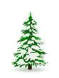 Tannenbaum, Winter, verschneit, Weihnachtsbaum, Schnee, Grün