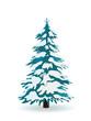 Tannenbaum, Winter, verschneit, Weihnachtsbaum, Schnee, Blau