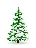 Fototapety Tannenbaum, Winter, verschneit, Weihnachtsbaum, Schnee, Grün
