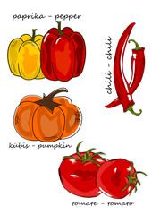 Gemüse, Vegetables  Illustration