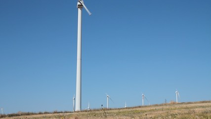 Single blade wind turbine in function and plants