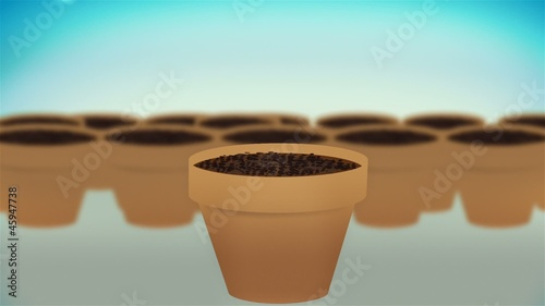A cash plants growing, concept animation