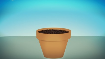 A cash plant growing, concept animation