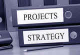 Projects and Strategy