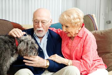 Senior Couple - Dog Lovers