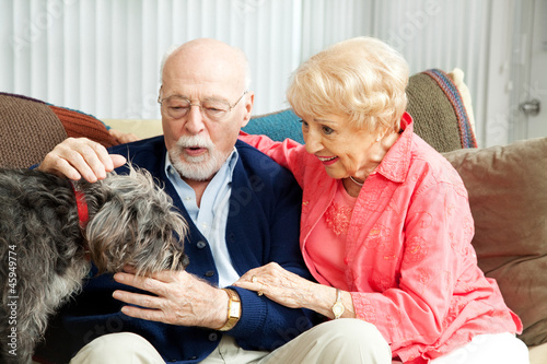 Senior Couple - Dog Lovers